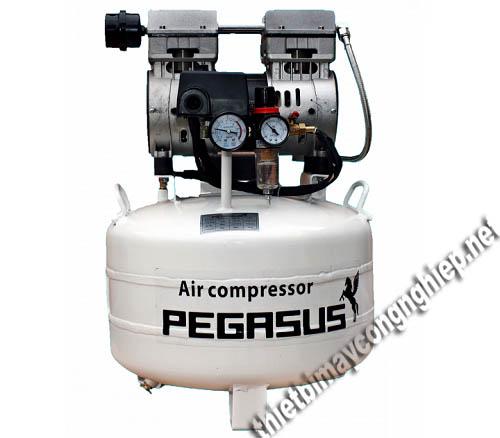 Các model Pegasus được thiết kế dạng máy piston nhỏ gọn