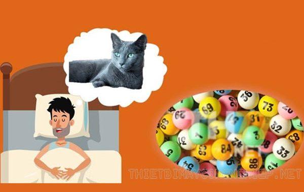 mơ thấy mèo thì đánh con gì