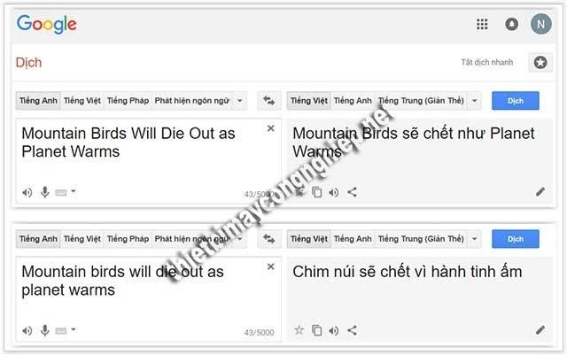 google dịch nói bậy bạ là gì