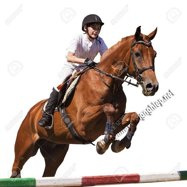 mơ thấy cưỡi ngựa