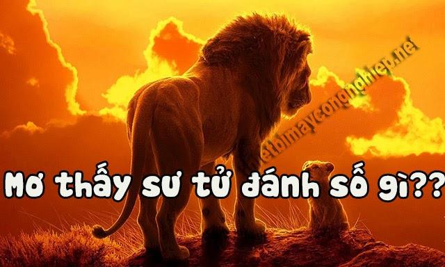 mơ thấy sư tử đánh con gì
