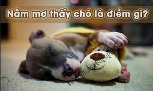 nằm mơ thấy chó