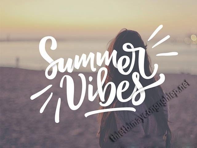 summer vibe là gì