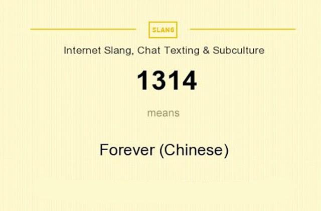 1314 mật mã tình yêu