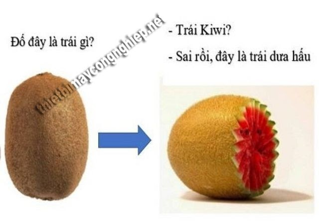troll người yêu bằng hình ảnh trái cây